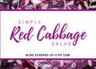 Simple Red Cabbage Salad at blog.essense-of-life.com