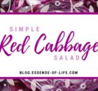 Simple Red Cabbage Salad at blog.essense-of-life.com