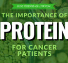 The Importance of Protein for Cancer Patients at blog.essense-of-life.com