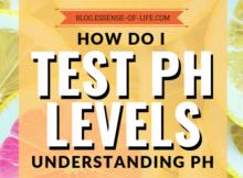 How Do I Test My pH Levels? Understanding pH