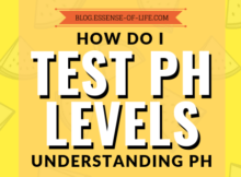 How Do I Test My pH Levels? Understanding pH