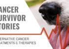 Pet Cancer Survivor Stories at blog.essense-of-life.com