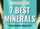 7 Best Minerals for Bone Health