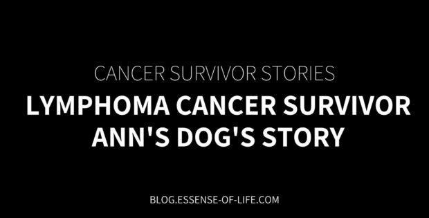 Lymphoma Cancer Survivor—Ann's Dog's Story